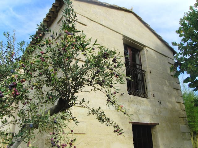 Le Mazet Authentique à Uzes - Uzès - House