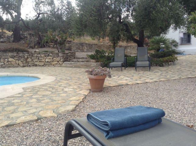 Landelijke woning met zwembad in olijfboomgaard
