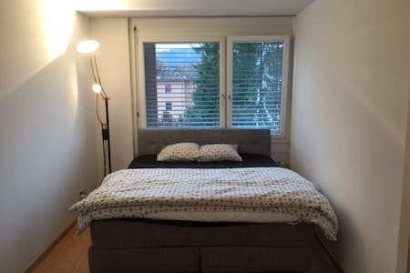Big room with extreme comfortable bed( for 2guest) - Nussbaumen