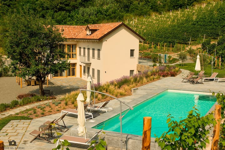 The house in the vineyard - Canelli - Villa