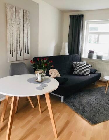 Stilvolles 1-Zimmer Appartement im Stadtzentrum