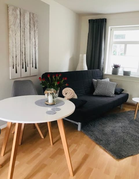 Stylish 1 bedroom apartment in the city center