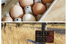 Our neighbor will gladly sell you some fresh eggs.