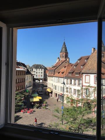 Logement hyper centre 20 mn Strasbourg  1-5 Pers.