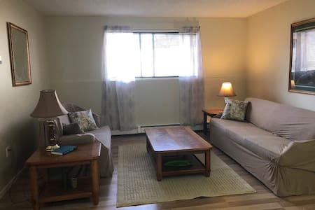 2 bedroom/one bath fully furnished Apartment