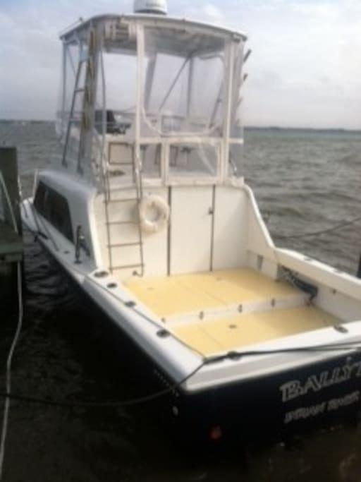 Our offshore 29 Phoenix twin diesel