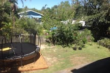 Large yard with vegetable garden and trampoline