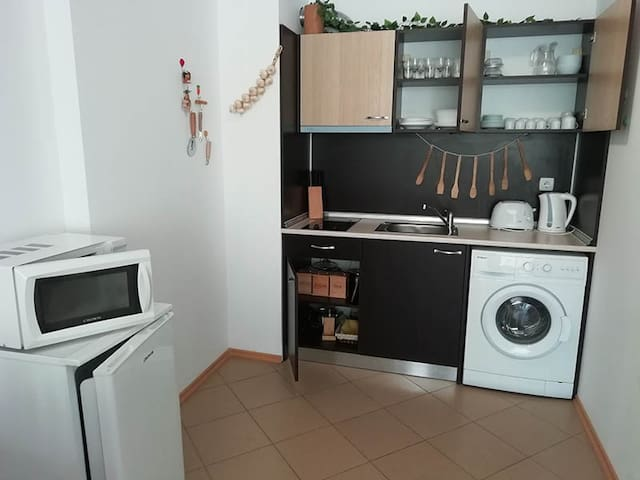 GRAND KAMELIA А-т: Кухня+зал,спальня (1 спальней)