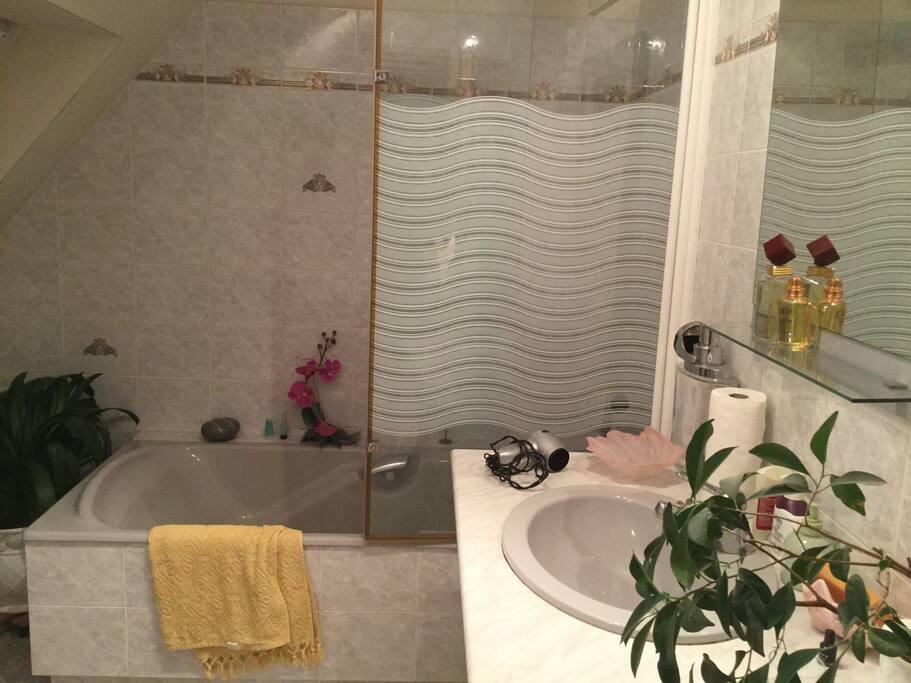 double vasque, douche et baignoire