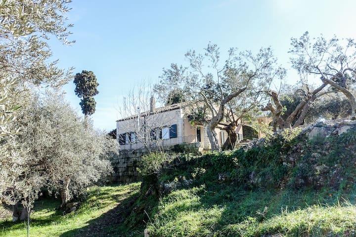 The Greens in Villa Caruso: your Sicilian dream