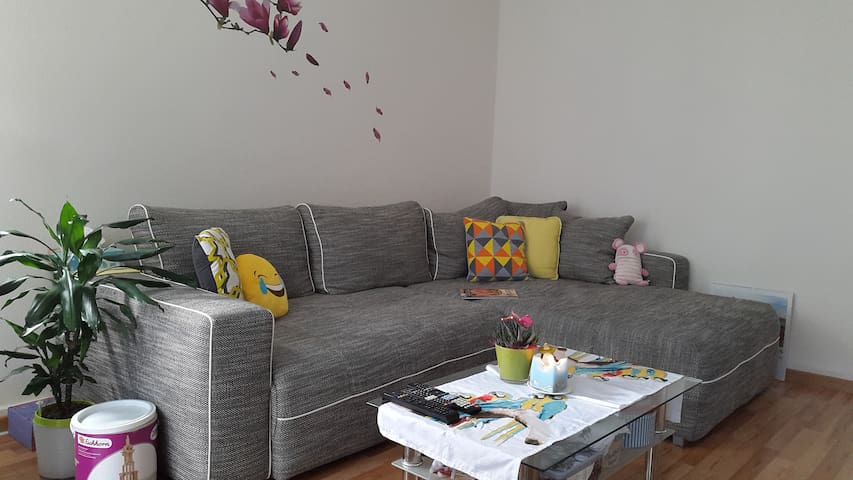 Charming apartment, 10min from city center - Zürich - Wohnung
