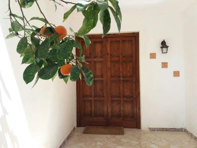 Cottage to 150 meters from the sea