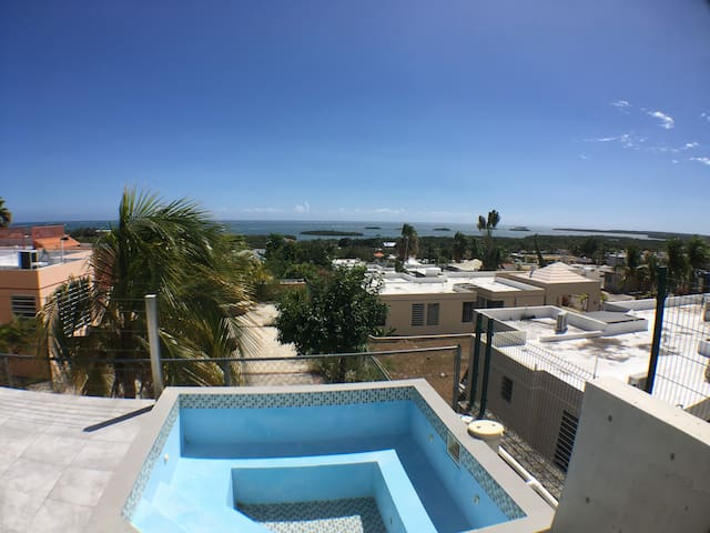 Windows To The Carribean