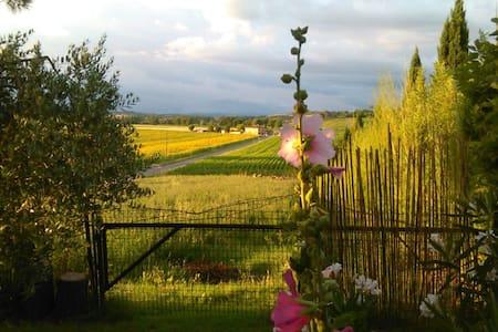 Stanza singola sulla Francigena - Villa