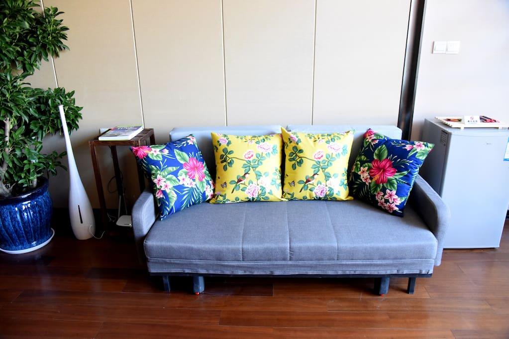 沙发床,加湿器、绿植、冰箱