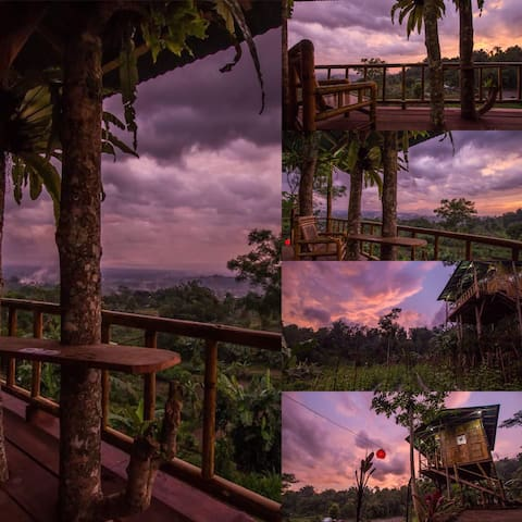 Balitreehouses - Baturiti - Nature lodge