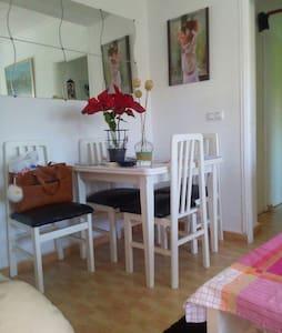 Huelva capital, wifi, aire acondic - Huelva - Wohnung