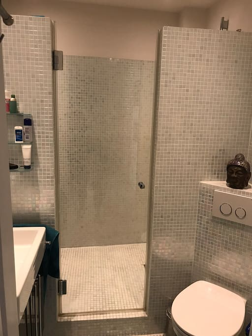 Shared bathroom with shower wet room