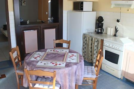 Appartement rez de jardin de 47m2 - Bogève - Lejlighed