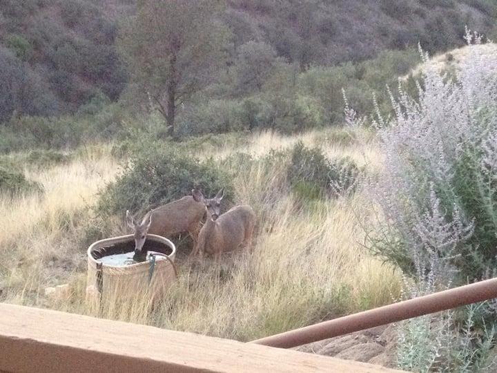 Prescott Views- Wildlife- Relaxation- 360 Views