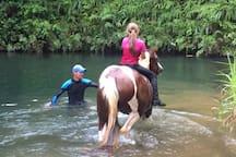 Balade à cheval au bassin Bleu