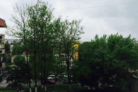 City Center Apartment - Tg Mures