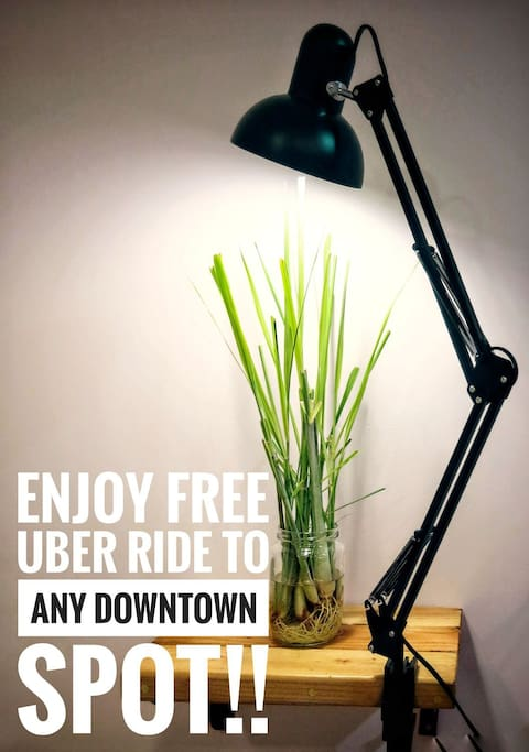 Yeah, you got that right! Free UBER!