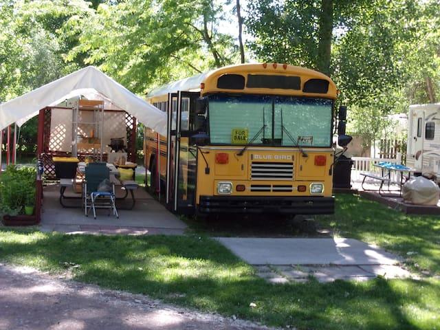 """Great American Eclipse"" BlueBird fun Bus Camping"