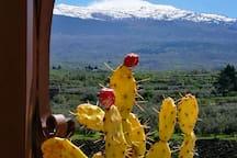I dintorni: l'Etna, a due passi da noi :-)