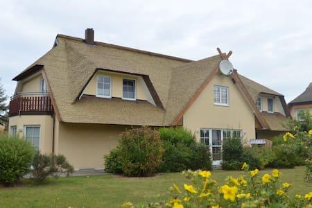 Reedhaus - Bodenblick 5 % Rabatt bis 31,03,2017 - Middelhagen