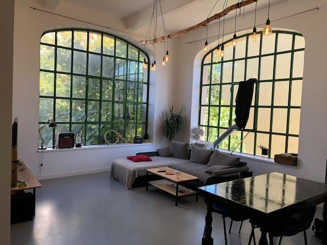 Appartement atypique - Type loft