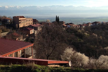 Serene location with wonderful view - Sighnaghi