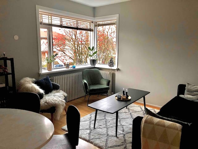 Cosy apartment in the heart of Reykjavík