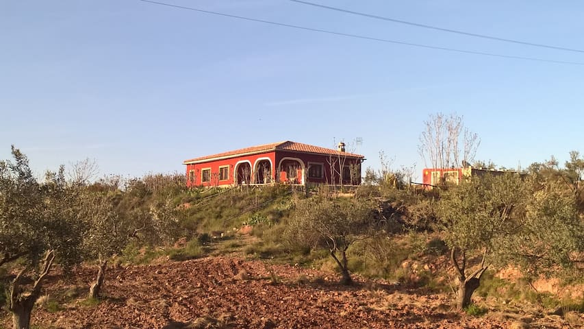 3 bedroom home within a working olive plantation