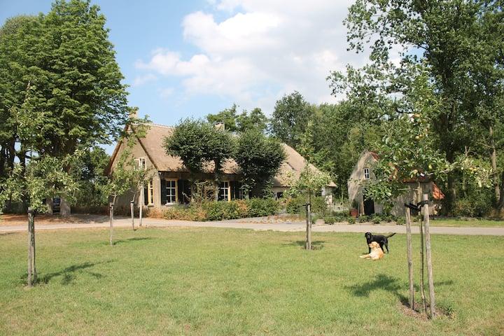 B&B Landgoed Nuwenhuys, Breda