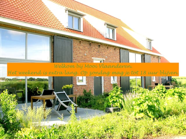 terrace/garden/near sea/peaceful/B - Schoondijke - Pis