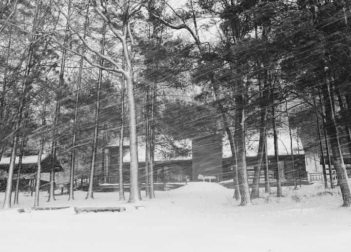 Two Lakes Lodge - Huge Michigan Cabin on 2 Lakes!