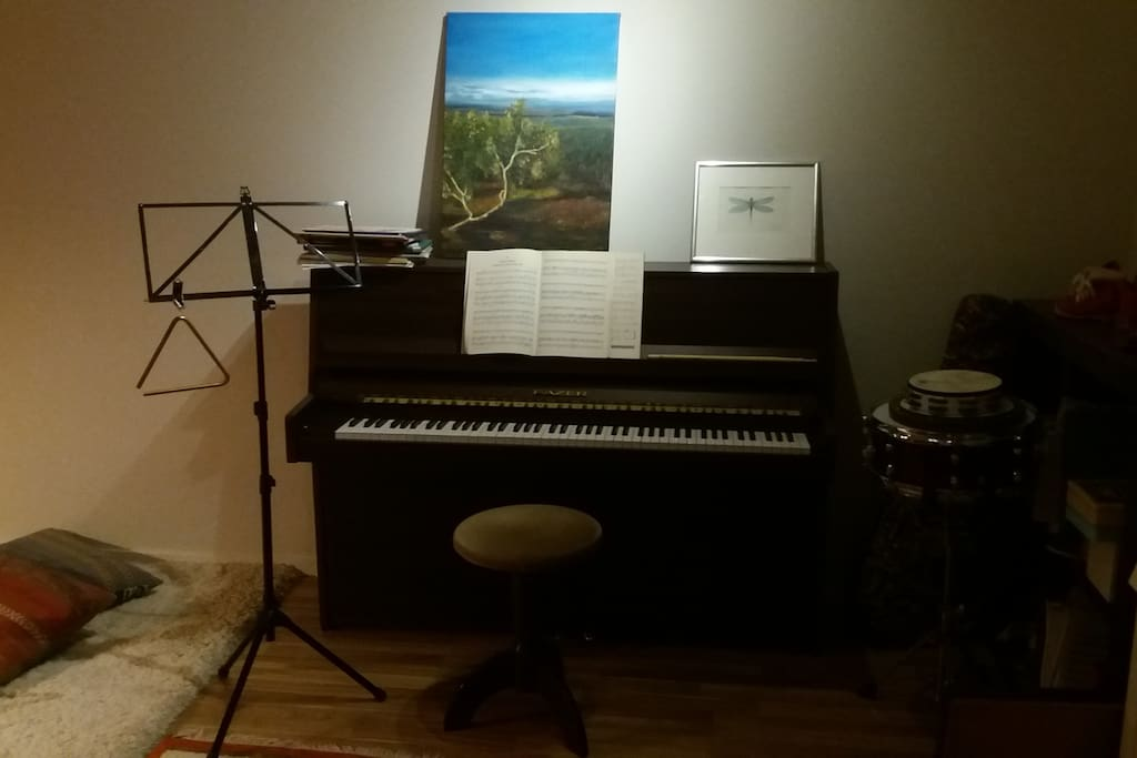 Music corner in the living room.