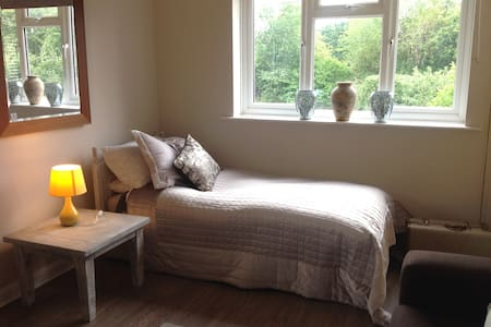 Single Occupancy, large double room