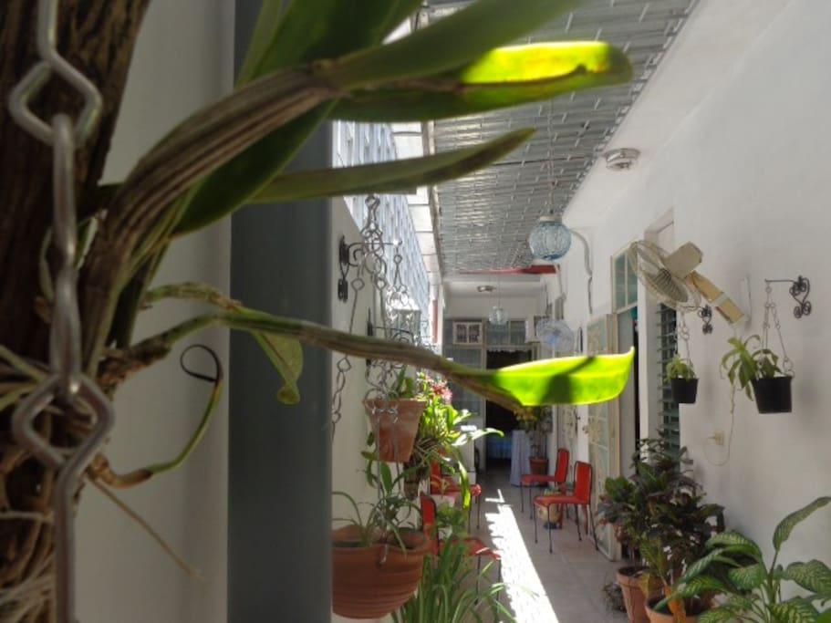 El corredor visto desde la saleta donde hay una mesa multiuso con 4 sillas, especial para desayunar o cenar, tomar el té un café o sentarse a trabajar.