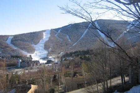 Sugarbush trail side great views!