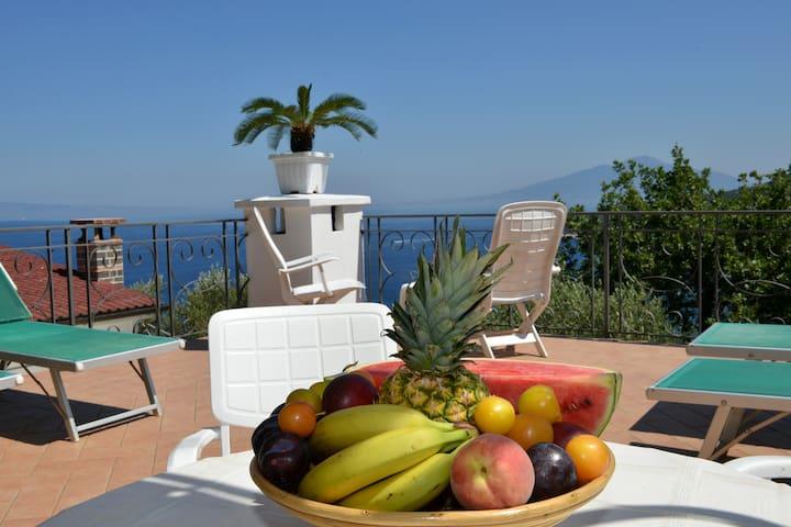 La Fenice - White villa - homeinsorrento-