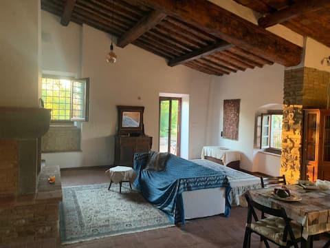 Appartamento spazioso in Chianti