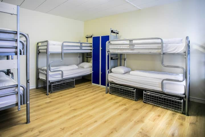 Bed in 12 Bed Dorm