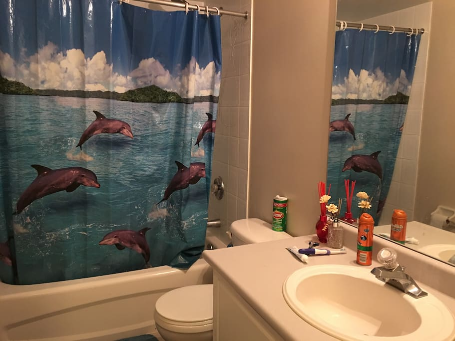 you might share this  shower & washroom with some roommate.