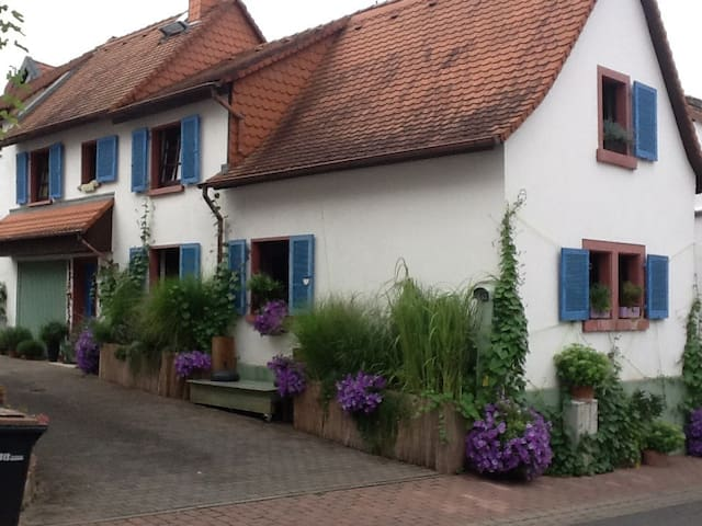 Ein Traum - Zentral gelegen in der Altstadt