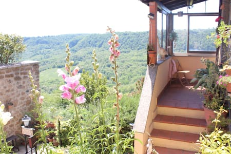 Bellavista Bagnoregio - Bagnoregio - Bed & Breakfast
