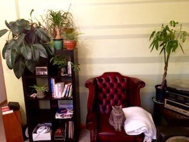 Private room in funky Cap Hill apt