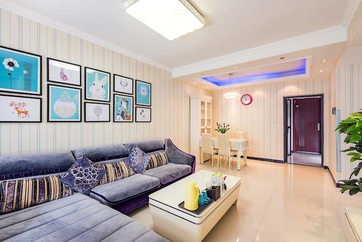 宽窄巷子/杜甫草堂/金沙遗址地铁口直达街景舒适两居 - Chengdu - Apartment