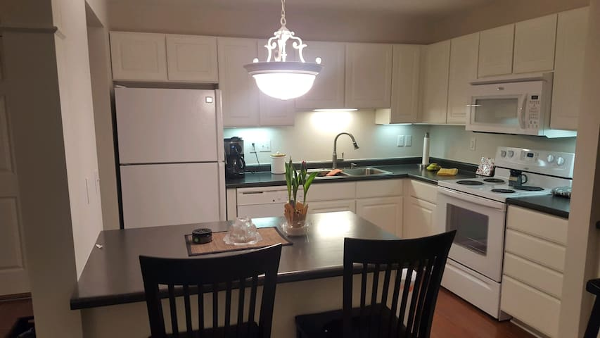 Clean, modern 2 bedroom condo. great for superbowl